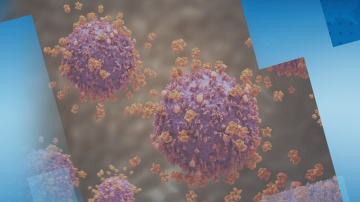 Първи случай на коронавирус във Великобритания