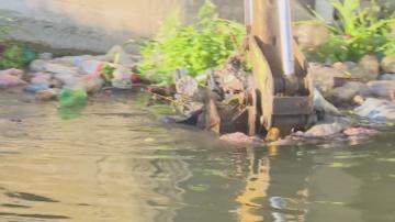 Откриха останки от животни в напоителен канал в Сливенско