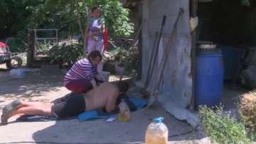 Стопанин от Крушаре се барикадира при животните си, няма да пуска ветеринари