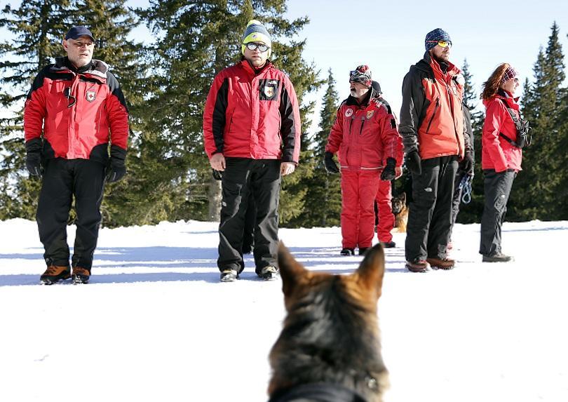 снимка 5 Как се провежда спасителна операция с кучета