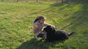 Куче асистент помага на дете с диабет