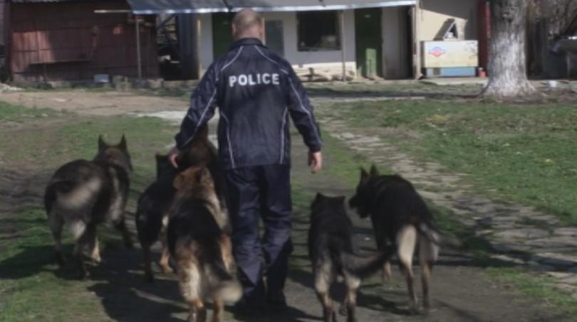 Тази година специално обучени кучета ще помагат на полицаите да