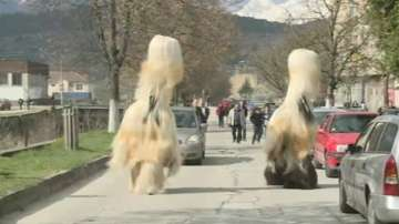 Над 300 кукери огласят разложкото село Елешница навръх Великден