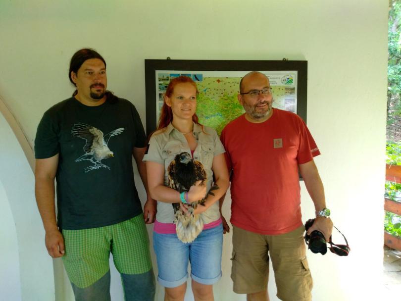 снимка 3 Eгипетски лешояди от eвропейски зоопаркове ще бъдат освободени в България