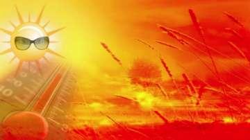 Настъпи астрономическото лято, днес е най-дългият ден в годината