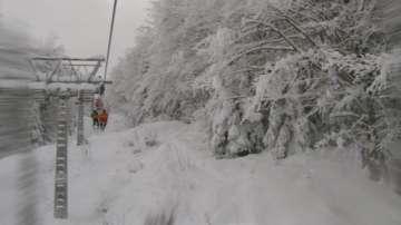 Туристи останаха блокирани на лифта в Добринище заради паднало дърво