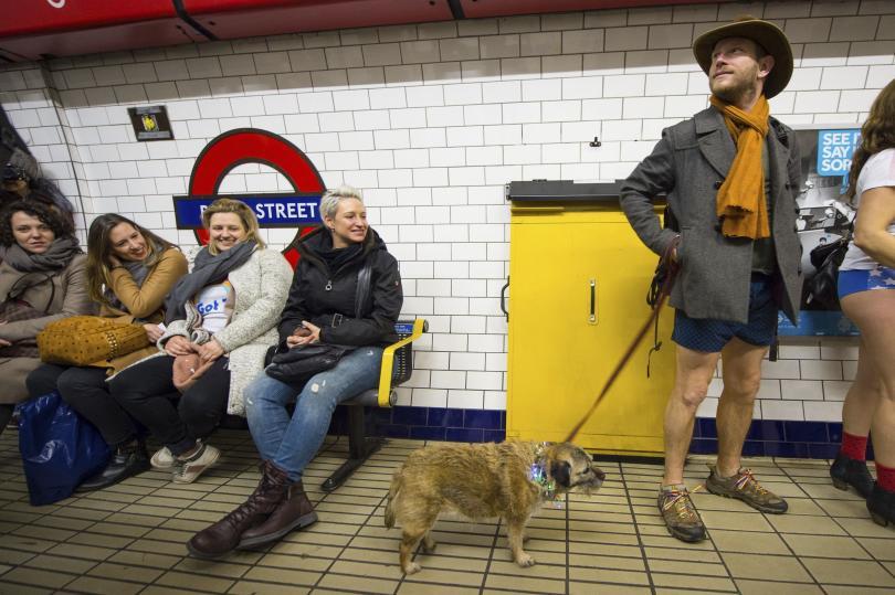 Стотици смели лондончани дръзнаха да излязат в студеното време и