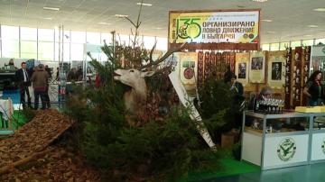 "В Пловдив стартира изложението ""Природа, лов, риболов"""