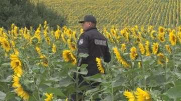 Акцията по издирването на избягалия затворник продължава