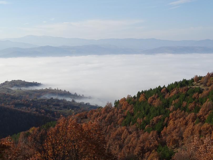 Преди обед се очакват мъгли