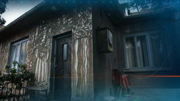 Съдът остави в ареста крадците на картините на Владимир Димитров-Майстора