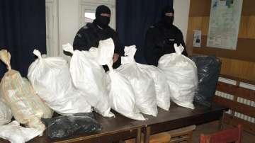 Криминалисти разкриха оранжерия за марихуана в Шуменско