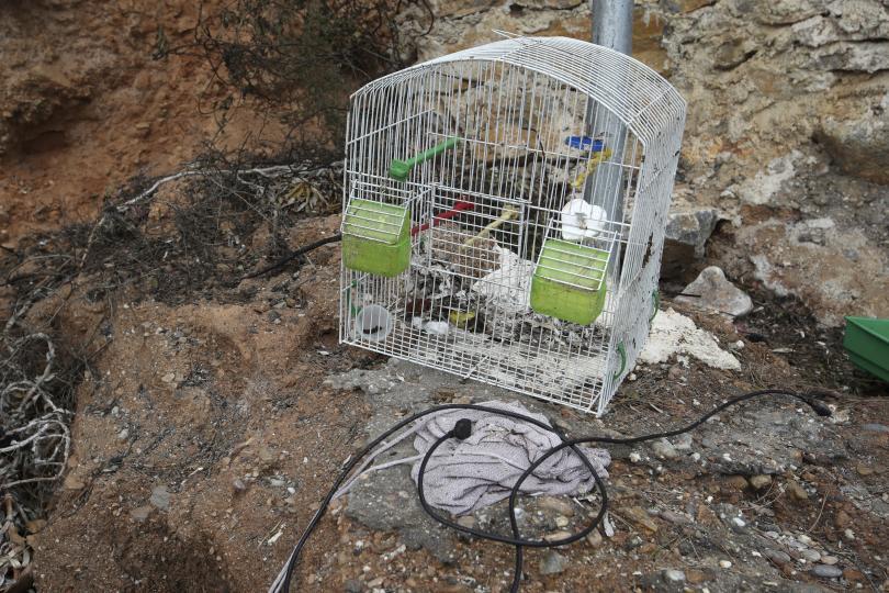 снимка 12 Трагедията отблизо: Под руините на опустошения град Мати (СНИМКИ)
