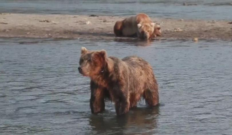 Руските власти затвориха временно популярен туристически маршрут на полуостров Камчатка