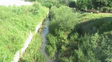 Непочистени речни корита тревожат жителите на Мездра