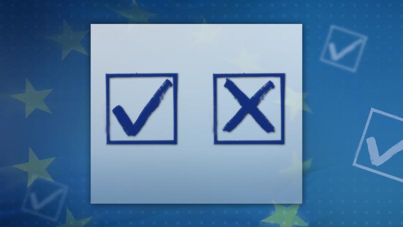 снимка 2 Избираме българските депутати в бъдещия Европейски парламент