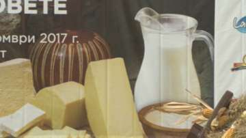 Млечните продукти може да поскъпнат заради недостиг на мляко в ЕС