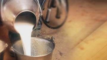 Пътят на българското мляко през вековете
