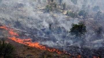 Военнослужещи от ВВС помагаха в гасенето на пожарите в Черна гора