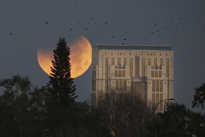 """снимка 2 Феноменът """"Супер синя кървава Луна"""" в снимки"""