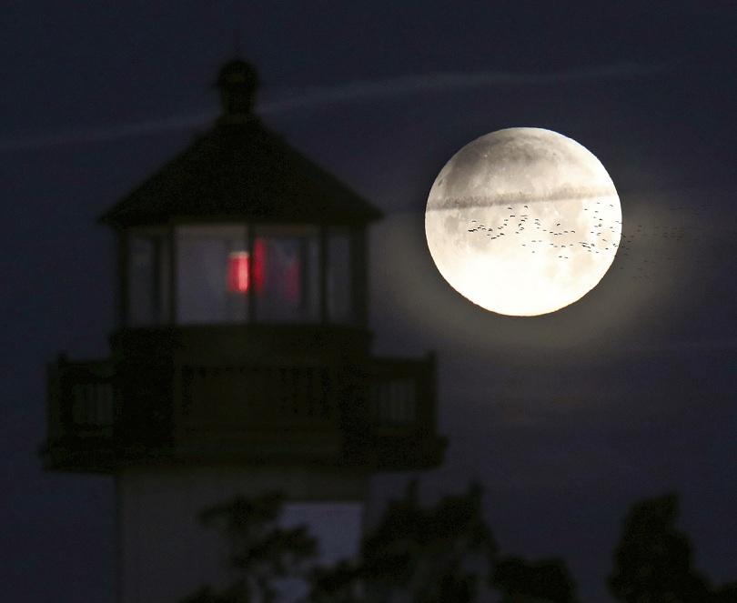 """снимка 4 Феноменът """"Супер синя кървава Луна"""" в снимки"""
