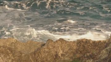 Няма опасност от цунами след земетресението в Карибско море