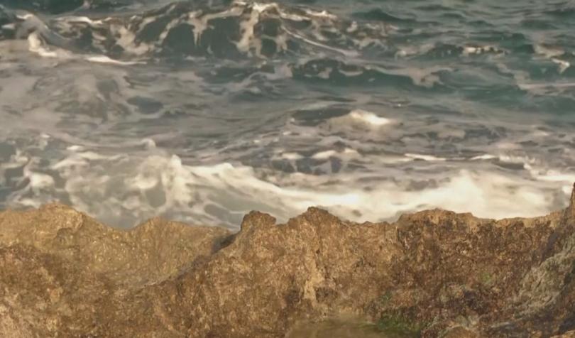 Няма опасност от цунами след мощното земетресение с магнитуд 7,7