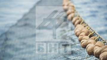 Рибарски сдружения: Забраната за риболов в Черно море ще обрече рибарите на глад