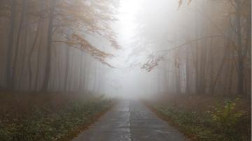 Мъгли в равнините