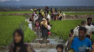 Над 2 600 къщи на малцинството рохинга са изгорени в Мианмар