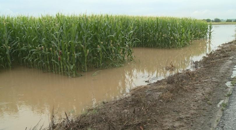 Щетите от наводненията върху пътищата в страната са за близо