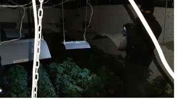 Високотехнологична, подземна наркооранжерия разкриха в София