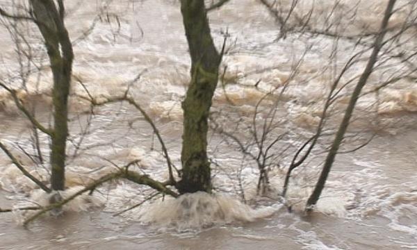 Извънредно положение в сръбска община заради наводнение