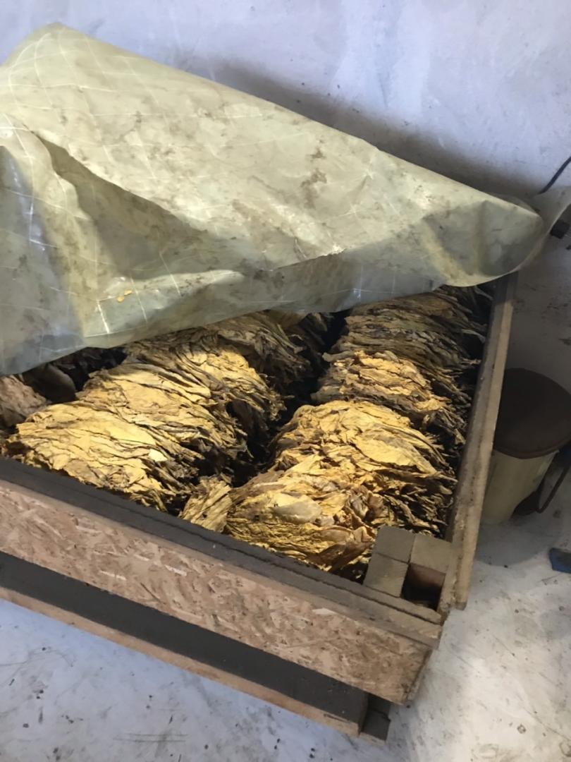 Нелегален цех за рязане на тютюн разкриха митнически служители от