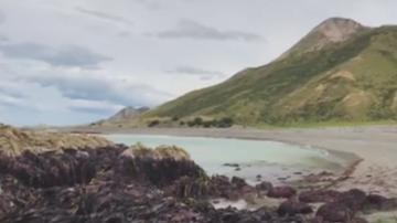 Дъно над морската повърхност след труса в Нова Зеландия