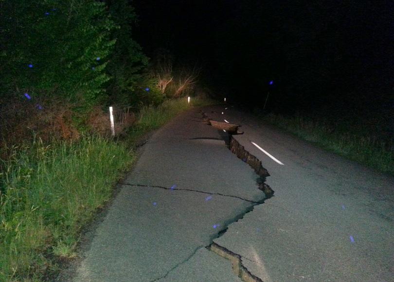 снимка 2 Три крави са блокирани на островче след земетресението в Нова Зеландия (ВИДЕО)