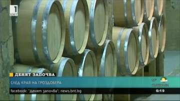 Реколтата от грозде в Пловдивско е с високо качество
