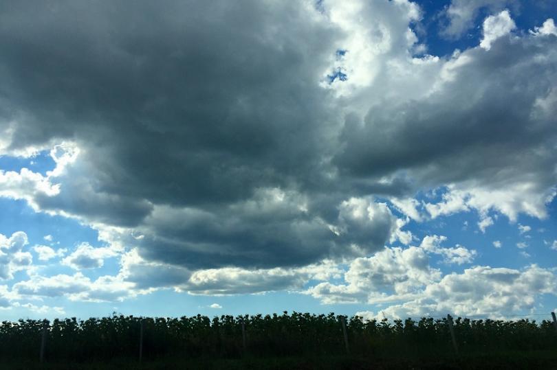 времето остава облачно дъждовно