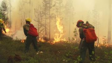 Над сто огнища на горски пожари възникнаха в сибийрския регион Иркутск