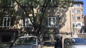 Операция по спасяване на коте в центъра на София