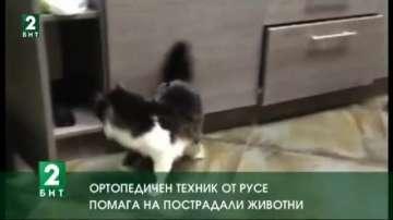 Ортопедичен техник от Русе помага на пострадали животни