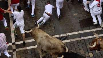 Четирима леко пострадаха при бягането пред бикове в Памплона