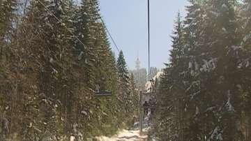 Бор падна върху лифта в Пампорово, няма пострадали туристи