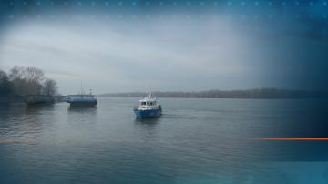 Държавата отказва да подпомогне борбата с комарите по поречието на Дунав