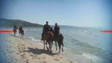 Конни патрули следят за спазването на реда в Албена
