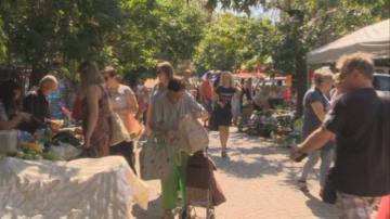 Изненадващи проверки по пазарите в София заради африканската чума по свинете