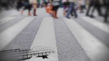 Експеримент на БНТ: Спазват ли се правилата за безопасност на пътя