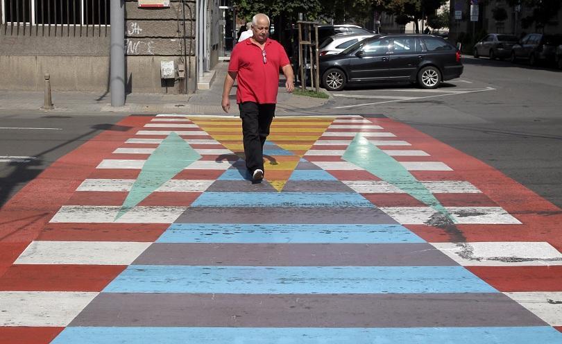 снимка 2 София осъмна с нови цветни пешеходни пътеки (СНИМКИ/ВИДЕО)