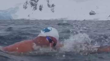 Петър Стойчев спечели първия организиран плувен маратон в Антарктида