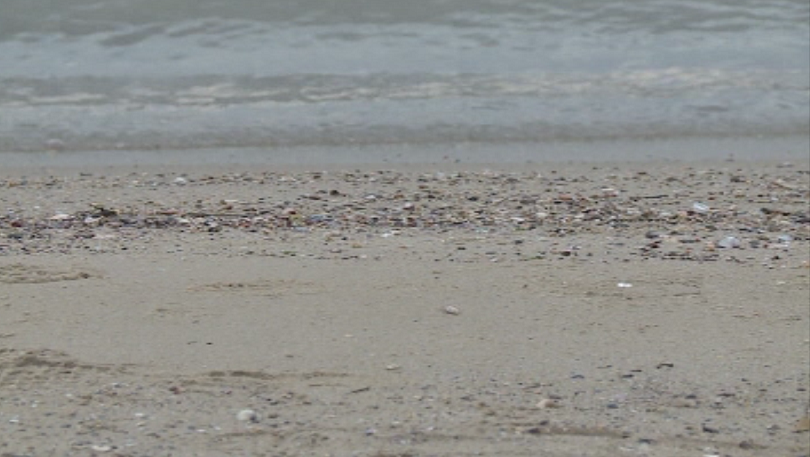 Снимка: Необичайна оферта: Американски сайт продава пясък от Офицерския плаж